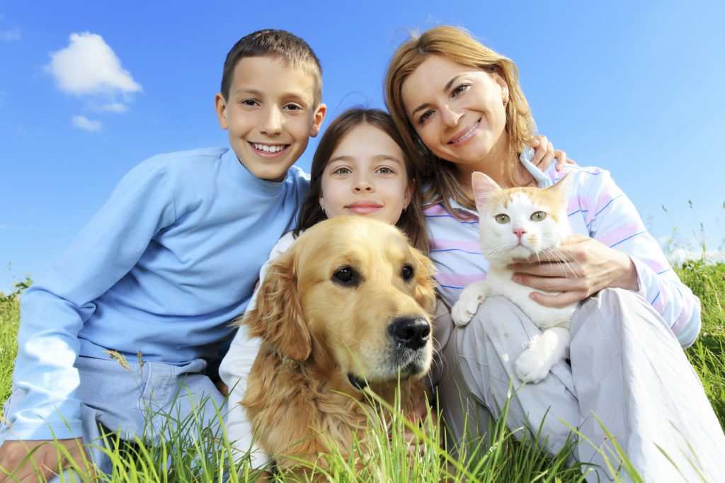 Happy family with pets resting outdoor on a meadow.